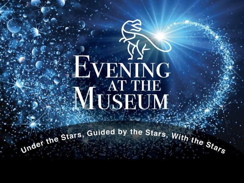 Evening at the Museum white text logo, T. rex, shooting star, and blue and black background of random planets and stars.