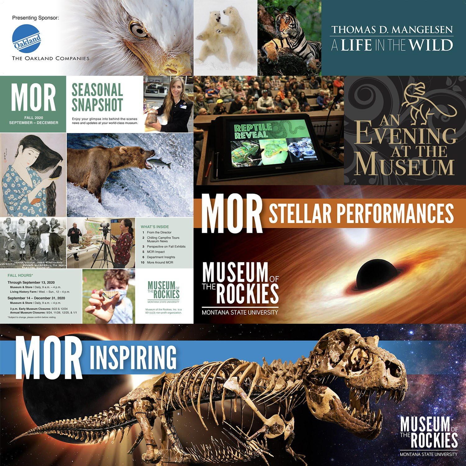 Collage of past numerous print and digital advertising pieces created for the museum,