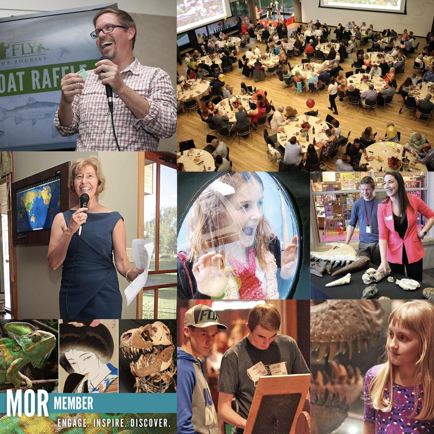 Photo collage of staff speaking, looking down onto numerous benefit event tables, children enjoying the museum, staff showing a fossil, and past membership email photo collage.