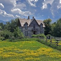 The circa 1880s Living History Farm in the summer with yellow flowers in the field around it and blue sky with puffy white clouds above.
