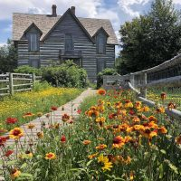 The circa 1880s Tinsley House looking down the boardwalk with various yellow and orange flowers in the flowerbeds.