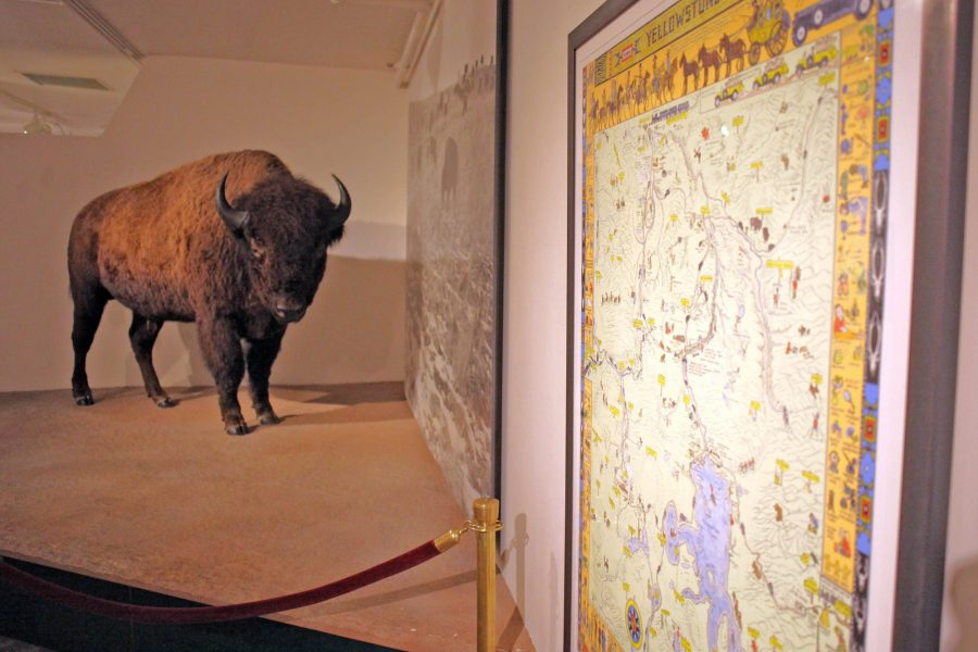 The full-size bison next to a map of Yellowstone National Park.