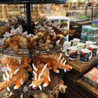 An Array of museum store plush toys & gifts.