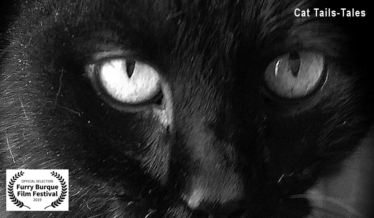 Cat Tails-Tales