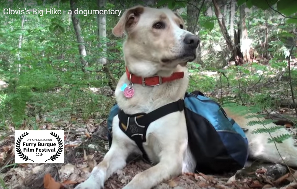 Clovis's Big Hike -- A Dogumentary