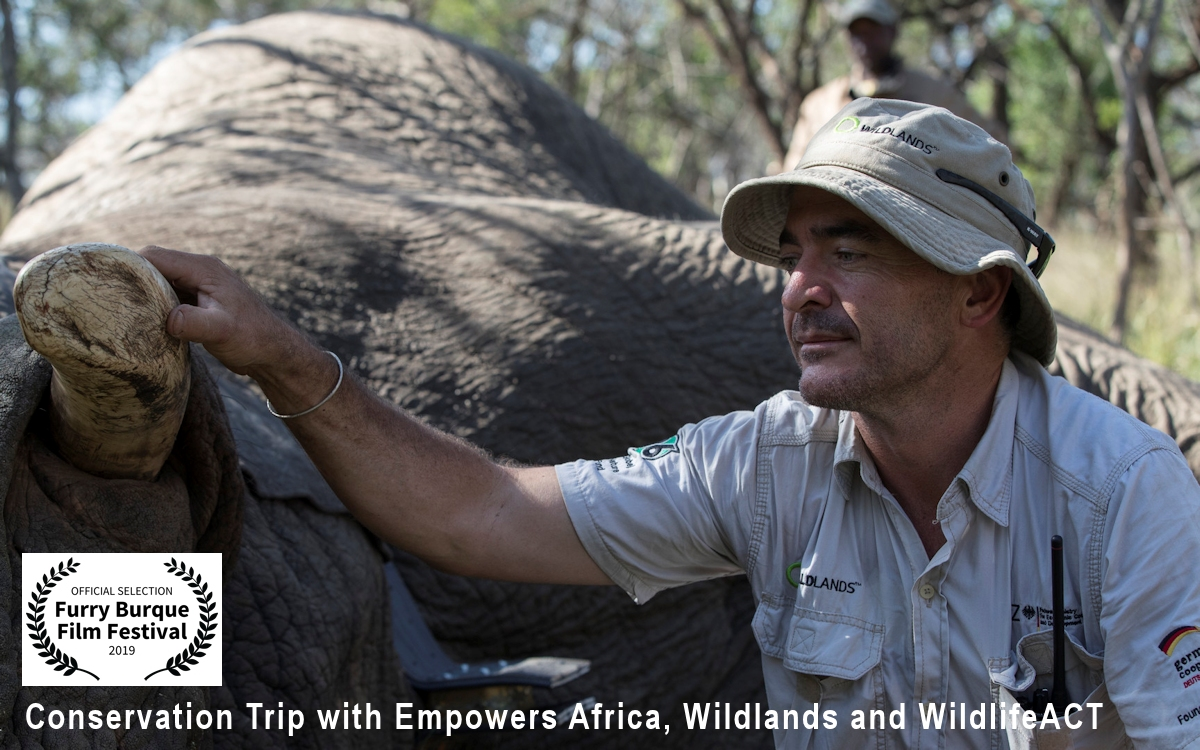Conservation Trip with Empowers Africa, Wildlands and WildlifeACT