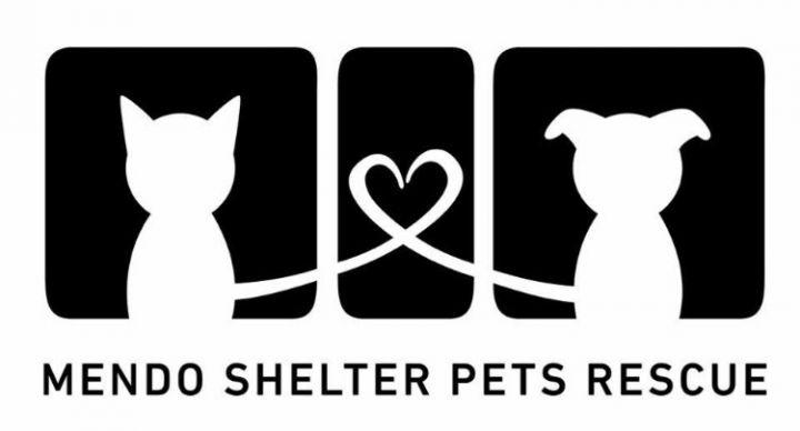 Mendo Shelter Pets Rescue