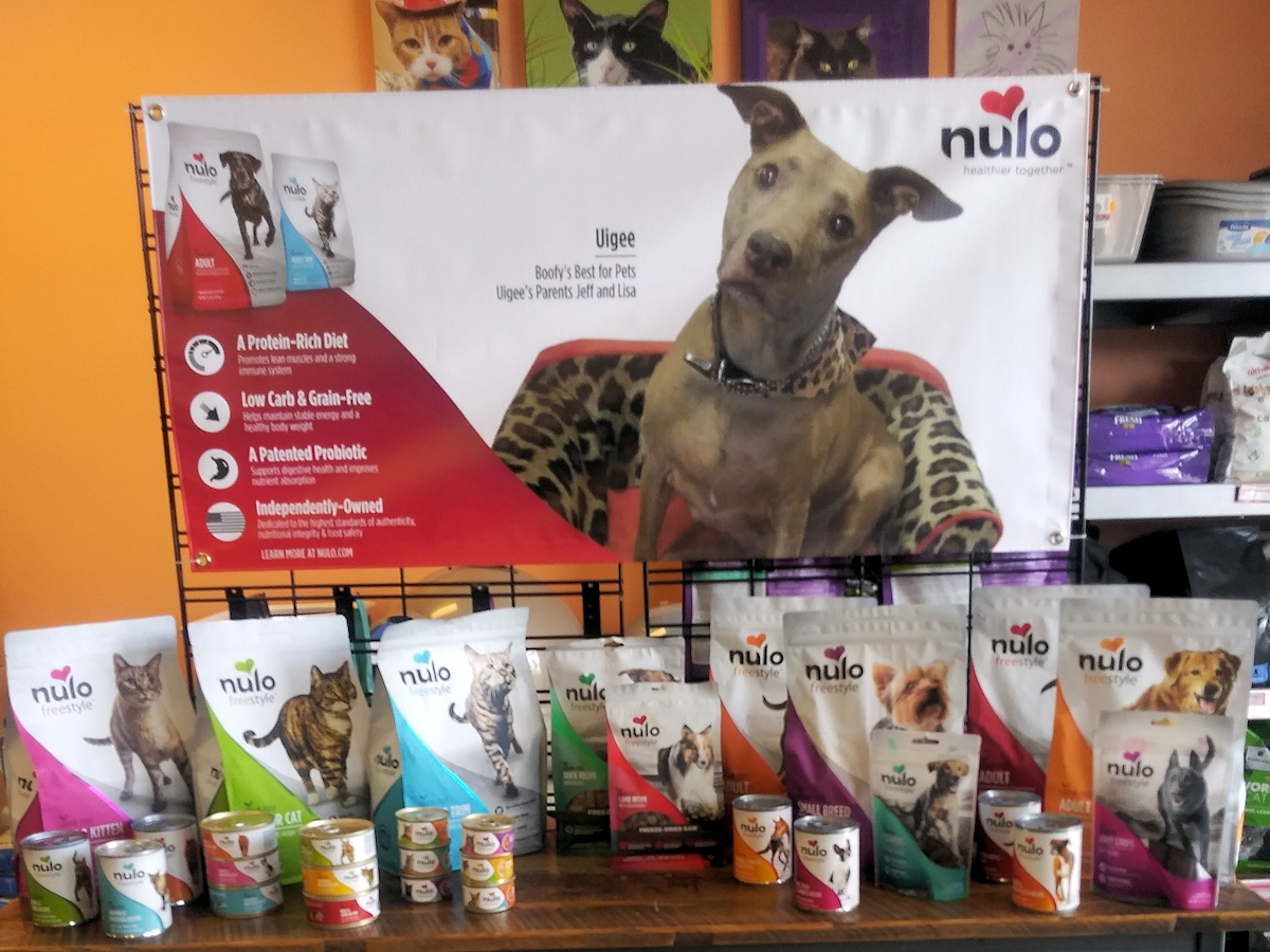Nulo banner featuring our store dog Uigee