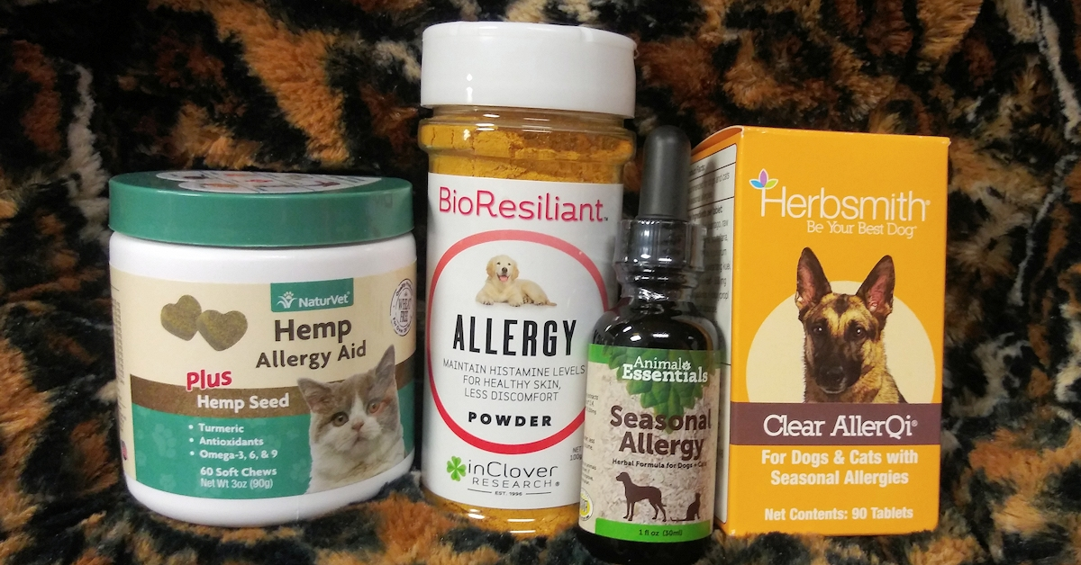 Natural Supplements for Pet Seasonal Allergies