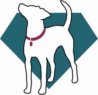 Pet Training Spokane - Puppie Training Classes, Stop Biting