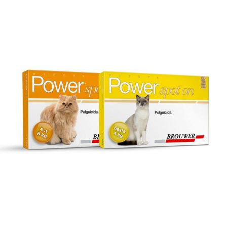 Power Gatos