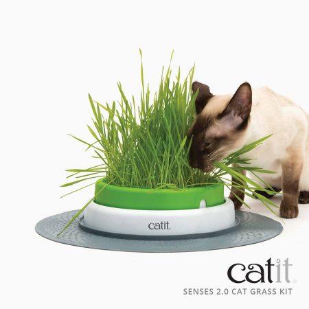 CATIT SENSES 2.0 - GRASS PLANTER