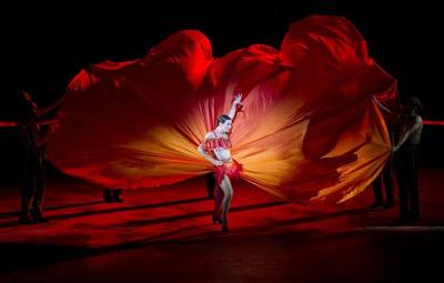 Ballet%20and%20Opera%20Carmen.jpg