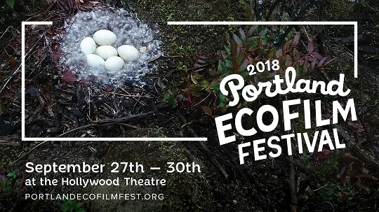 Ecofilm_2018_Screen.jpg
