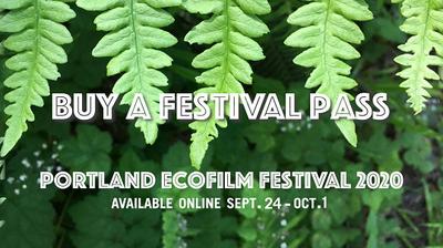 Festival Fest Pass