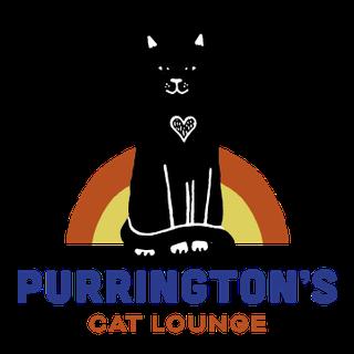 Purrington's Cat Lounge_Brand Suite-1.png