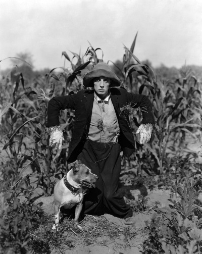 buster-keaton-the-scarecrow-luke-the-dog-pretty-clever-films_sm.jpg