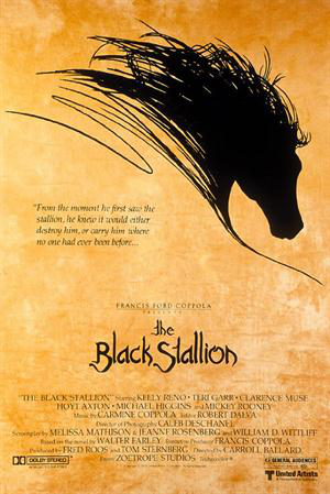 stallion2.jpg