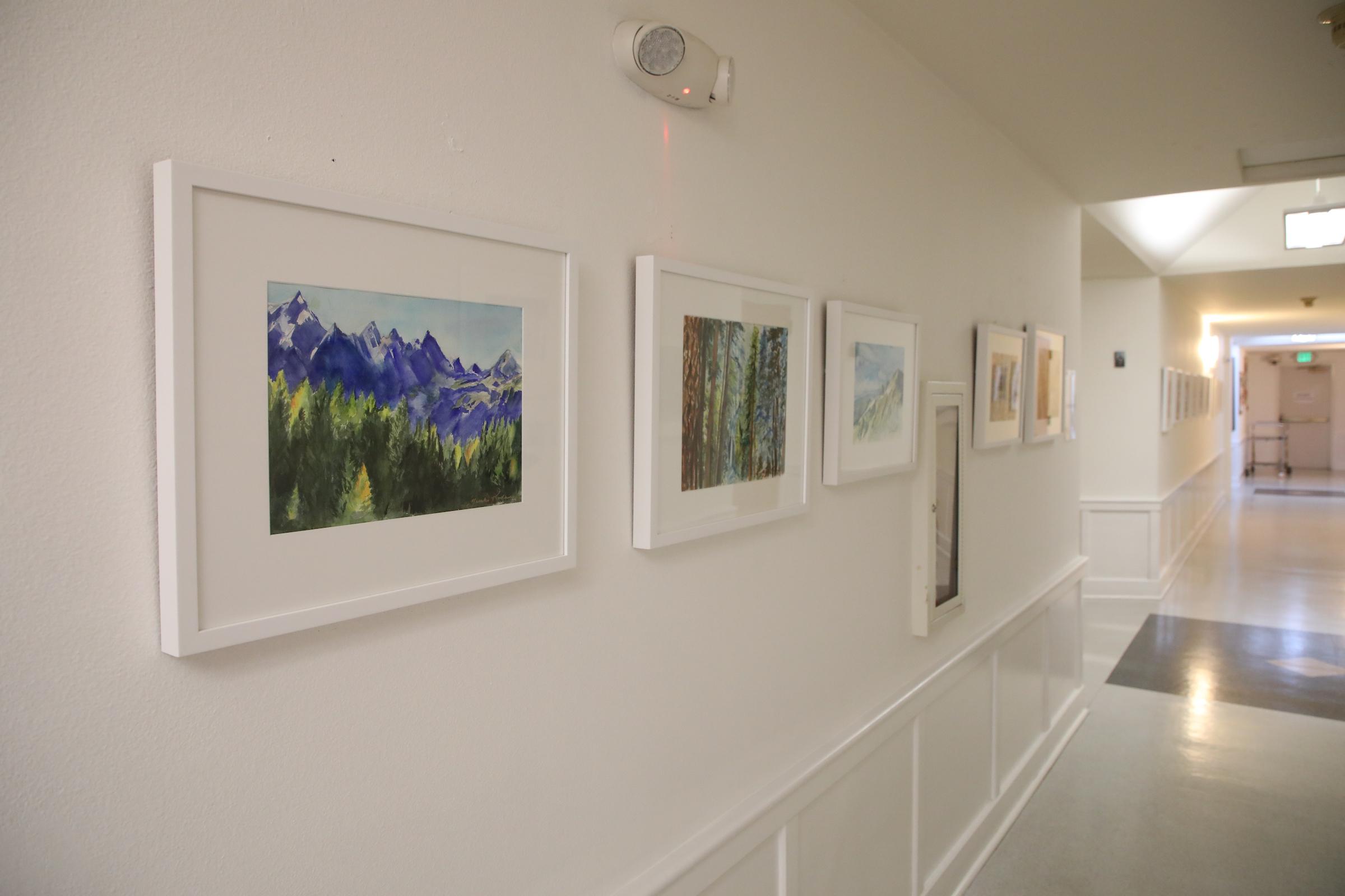 photo of images hanging on a hallway wall