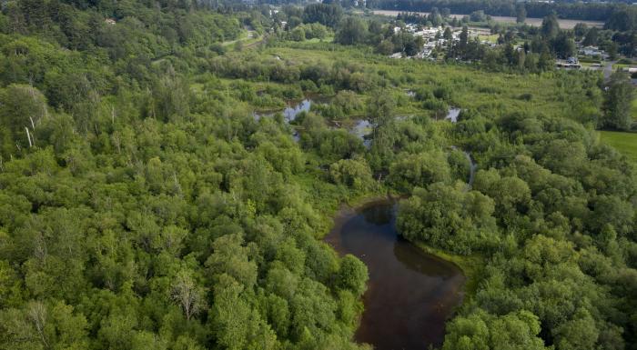 aerial photo of habitat site