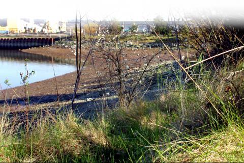 qwiqwǝlut is the site of a former fertilizer plant
