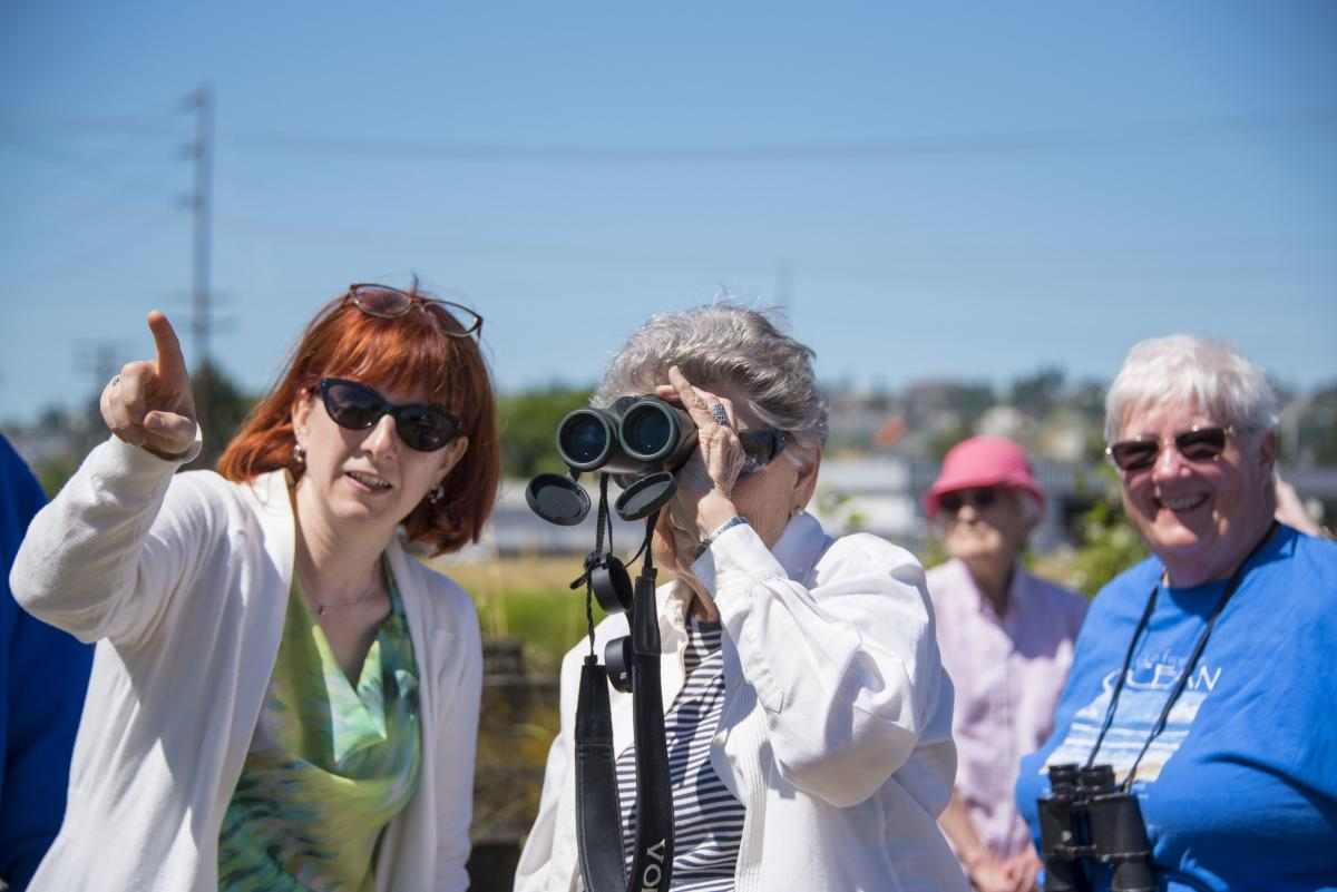 photo of a group birdwatching