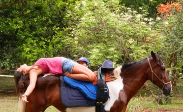 Yoga with Horses 2 Day Workshops Costa Rica