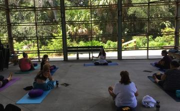 Hridaya Yoga and Meditation Workshops on the Space Coast in USA