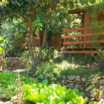 Suleyman's Garden