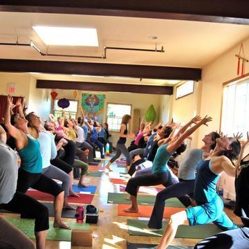 Om Shala Yoga