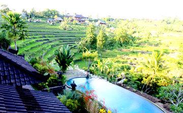 Dharma in the Body-Bali to Borobudur