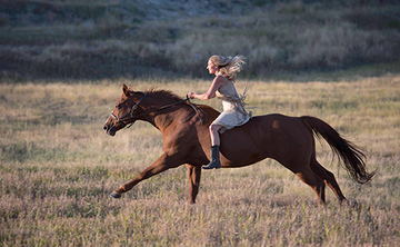 Become Unbridled- A Women's Equine Retreat- SOLD OUT!