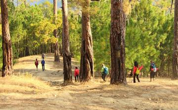 4 Days Himalayan Meditation and Yoga Retreat in Satkhol, India