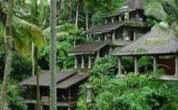 Divine Bali Bliss retreat