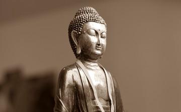 Essentials of Meditation Retreat November 2017