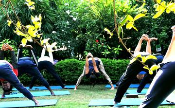 29 Days 200-Hour Multi-Style Yoga Teacher Training in Rishikesh, India