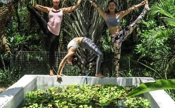29 Days 200hr Hatha & Vinyasa Yoga Teacher Training Course