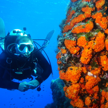 Underwater: 6 Days Adventure Scuba-Diving Yoga Retreat in Gozo, Malta