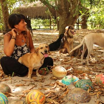 Creative Experimentation & Loving Dogs