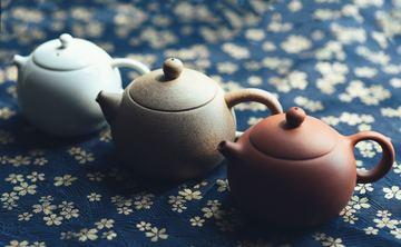 Japanese Tea Ceremony and Insight Dialogue