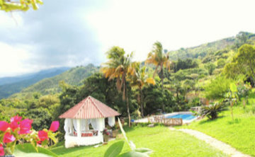 Ayahuasca Retreat in Cali, Colombia (April 2019)