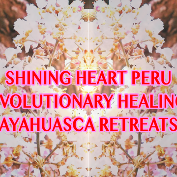 14 Day Ayahuasca Healing Transformation Retreat, With 1-3 Master Plant Diets, 5 Ceremonies, Shamanic Guidance and Integration in English, at Shipibo Center