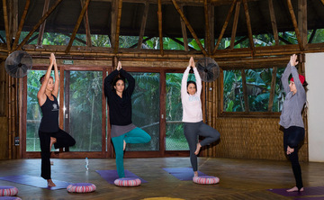 8 Days Beach and Rainforest, Eco-Spiritual immersion & Shamanic healing with Surf and Yoga in Brazil