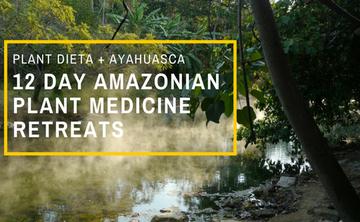 Twelve Day Visionary Plant Medicine Retreats