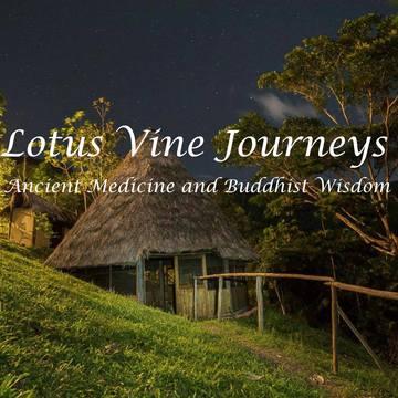 Lotus Vine Journeys