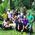 Rainforest Healing Center