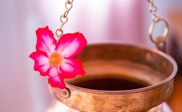 Yoga and Ayurveda Detox Retreat