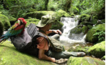 Ayahuasca Retreat in  Sacred Valley & Madre Selva High Jungle Retreat (July - Aug 2018)