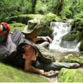 Madre Selva Quillabamba