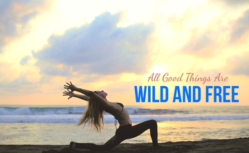 8 Day / 7 Night Ocean Front Yoga Retreat in Mexico